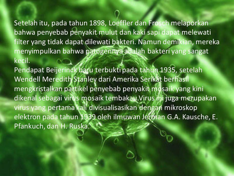 B.Ciri-ciri virus Virus bukan merupakan tumbuhan, hewan, atau bakteri.