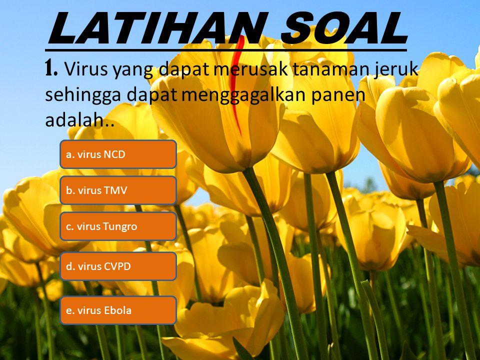 LATIHAN SOAL 1. Virus yang dapat merusak tanaman jeruk sehingga dapat menggagalkan panen adalah.. c. virus Tungro b. virus TMV a. virus NCD d. virus C