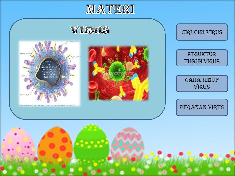 7.Pada bagian tubuh virus yang mengandung RNA atau DNA adalah ….