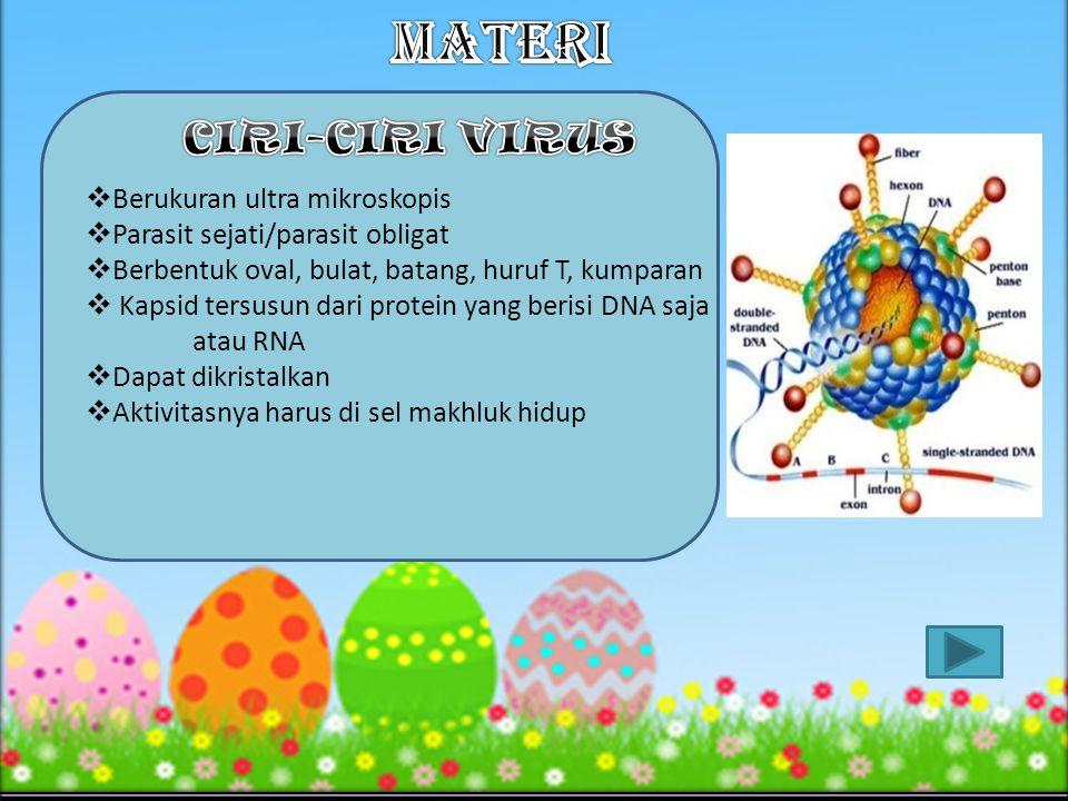 8.Salah satu contoh ribovirus adalah ….