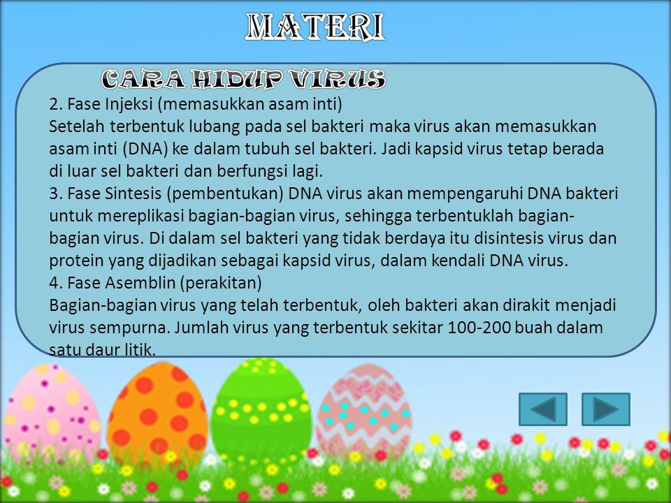 Cara reproduksi virus dikenal sebagai proliferasi yang terdiri dari: a.