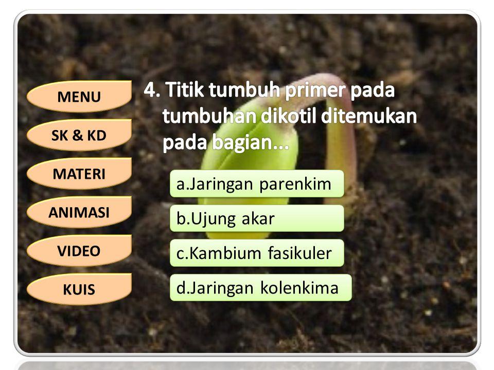 MENU SK & KD MATERI ANIMASI VIDEO KUIS a.Jaringan parenkim b.Ujung akar c.Kambium fasikuler d.Jaringan kolenkima