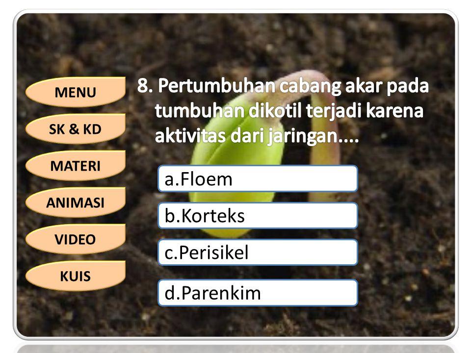 MENU SK & KD MATERI ANIMASI VIDEO KUIS a.Floem b.Korteks c.Perisikel d.Parenkim