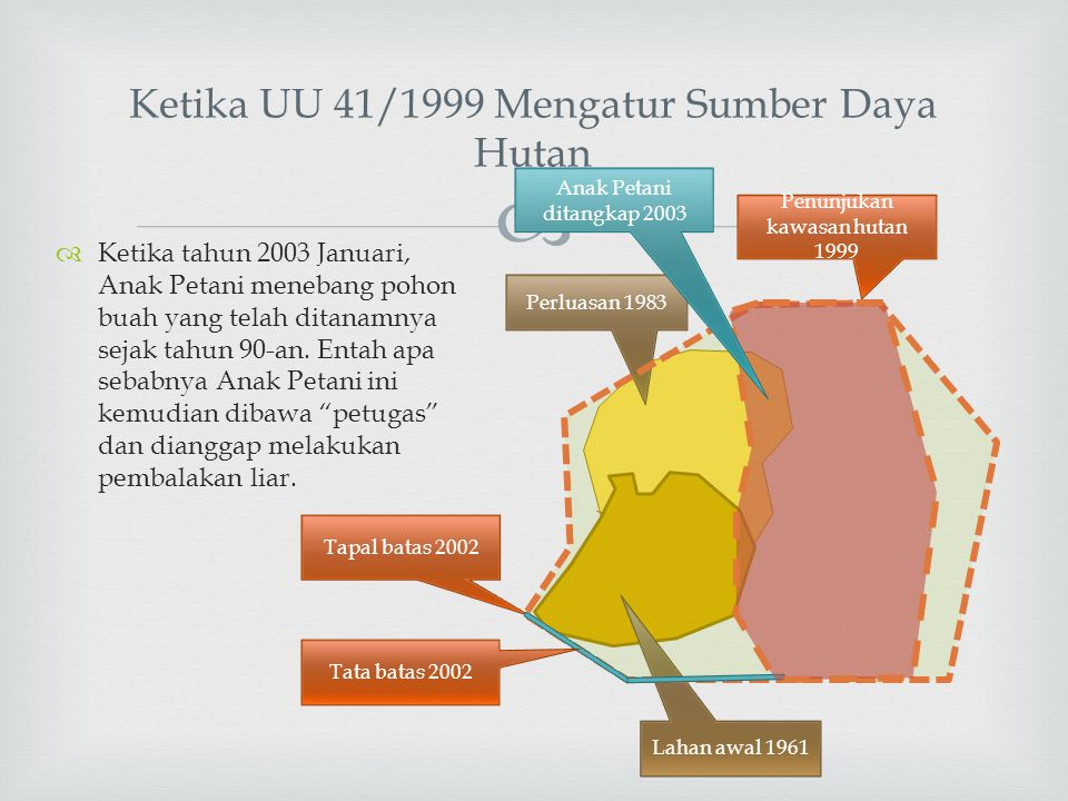  Ketika UU 41/1999 Mengatur Sumber Daya Hutan  Ketika tahun 2003 Januari, Anak Petani menebang pohon buah yang telah ditanamnya sejak tahun 90-an. E
