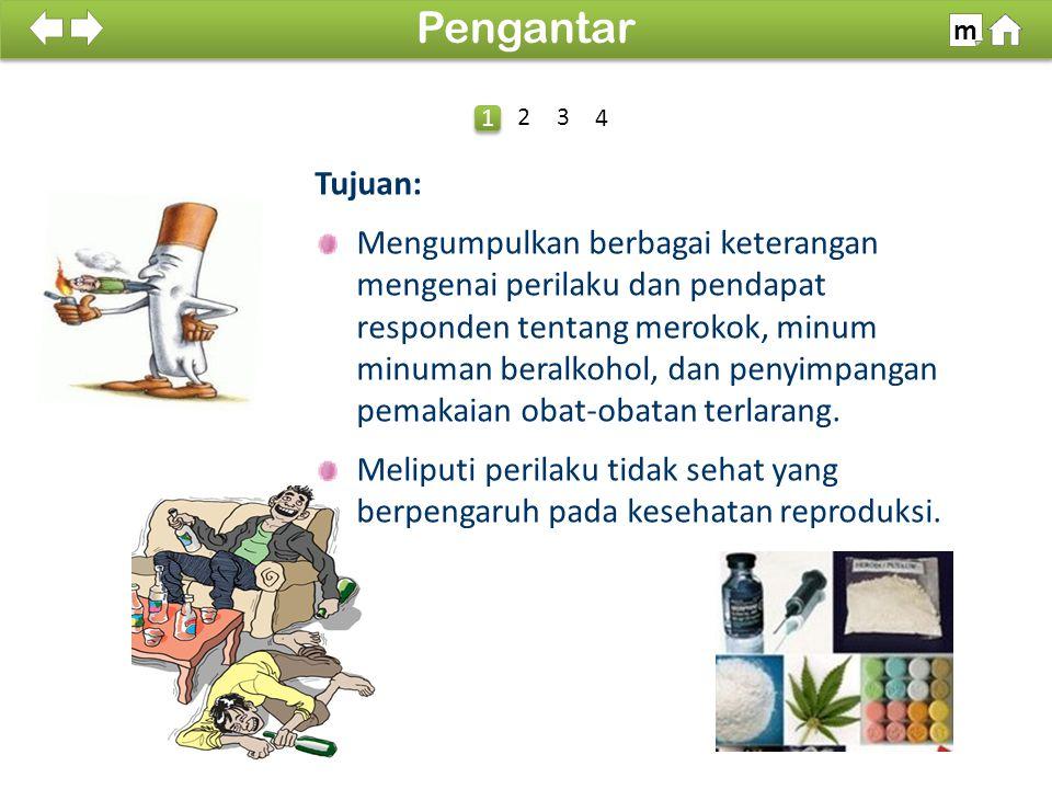 100% SDKI 2012 Tujuan: Mengumpulkan berbagai keterangan mengenai perilaku dan pendapat responden tentang merokok, minum minuman beralkohol, dan penyim