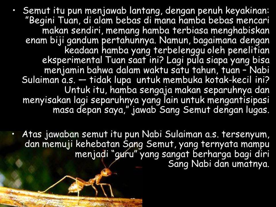 "•Dengan penuh kekaguman, Nabi Sulaiman a.s. pun berkomentar, seraya bertanya: ""Wahai semut, sudah setahun berlalu, Anda masih segar-bugar dengan tanpa"