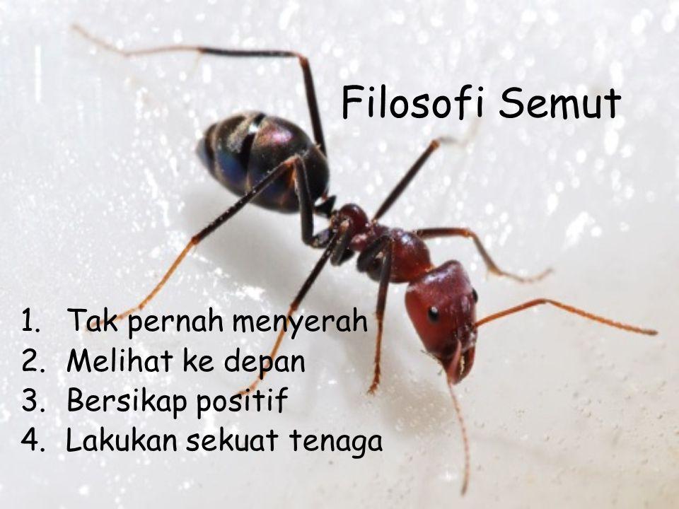 Fakta Semut •Semut memiliki jumlah yang jauh lebih banyak dari kebanyakan makhluk hidup lain di dunia ini. Untuk setiap 700 juta semut yang lahir di d