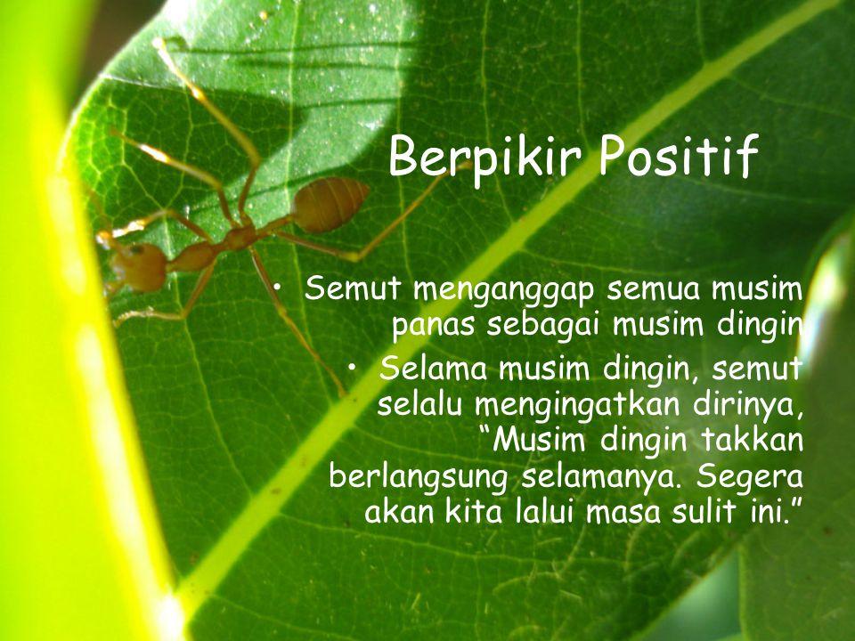 Berpikir Positif •Semut menganggap semua musim panas sebagai musim dingin •Selama musim dingin, semut selalu mengingatkan dirinya, Musim dingin takkan berlangsung selamanya.