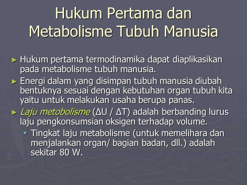 Hukum Pertama dan Metabolisme Tubuh Manusia ► Hukum pertama termodinamika dapat diaplikasikan pada metabolisme tubuh manusia. ► Energi dalam yang disi