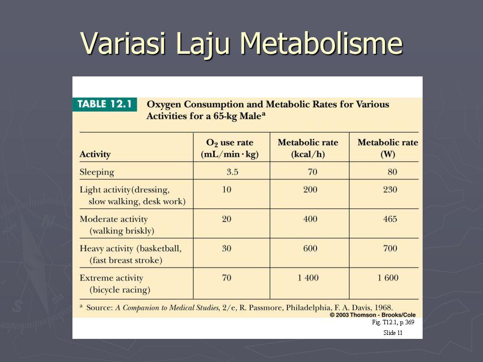 Variasi Laju Metabolisme