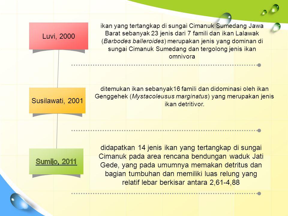 Luvi, 2000 Susilawati, 2001 ikan yang tertangkap di sungai Cimanuk Sumedang Jawa Barat sebanyak 23 jenis dari 7 famili dan ikan Lalawak (Barbodes ball