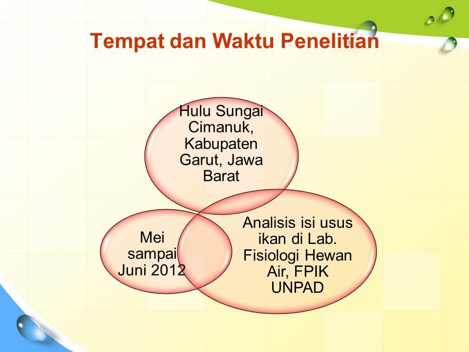 Tempat dan Waktu Penelitian Hulu Sungai Cimanuk, Kabupaten Garut, Jawa Barat Analisis isi usus ikan di Lab. Fisiologi Hewan Air, FPIK UNPAD Mei sampai