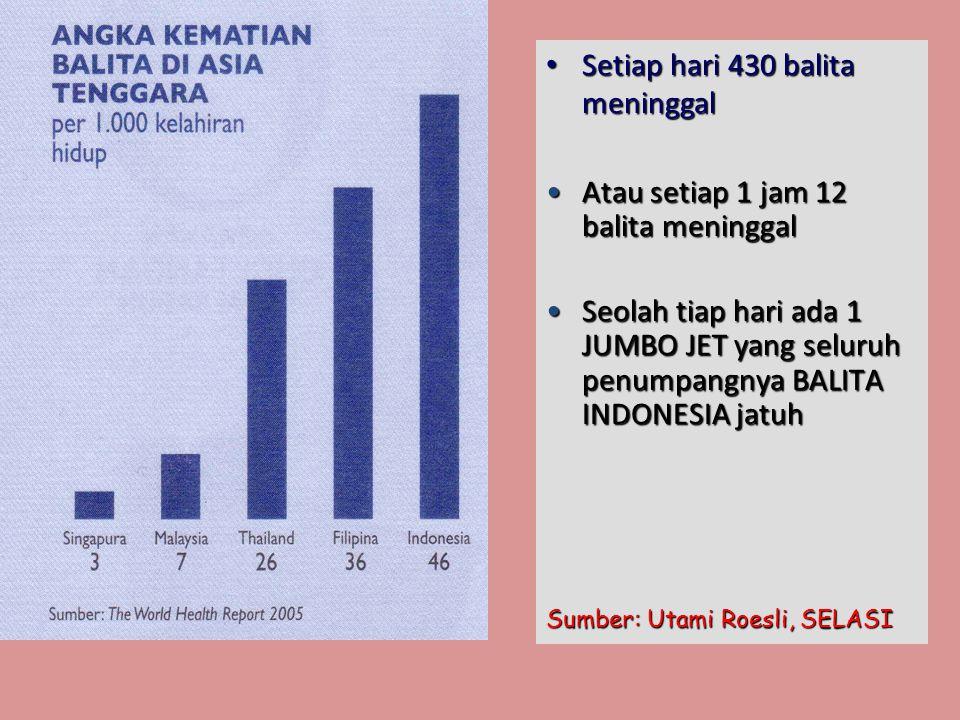 • Setiap hari 430 balita meninggal •Atau setiap 1 jam 12 balita meninggal •Seolah tiap hari ada 1 JUMBO JET yang seluruh penumpangnya BALITA INDONESIA