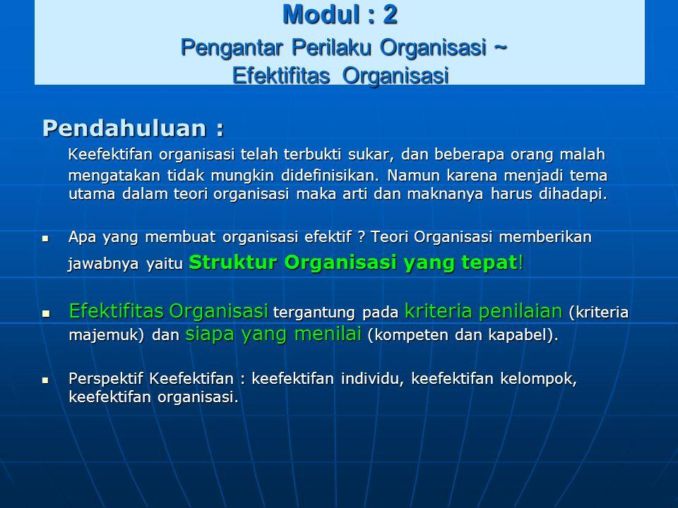 Modul : 2 Pengantar Perilaku Organisasi ~ Efektifitas Organisasi Pendahuluan : Keefektifan organisasi telah terbukti sukar, dan beberapa orang malah K