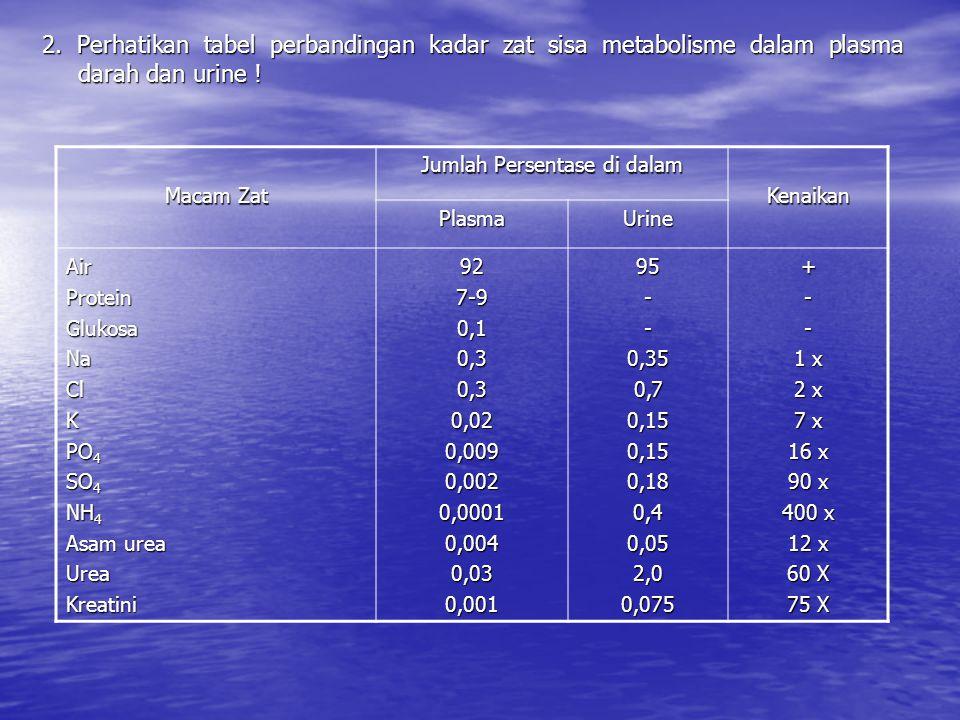 2. Perhatikan tabel perbandingan kadar zat sisa metabolisme dalam plasma darah dan urine ! Macam Zat Jumlah Persentase di dalam Kenaikan PlasmaUrine A