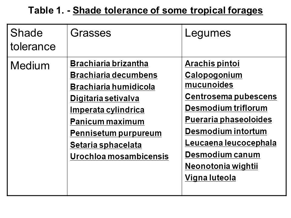 Table 1. - Shade tolerance of some tropical forages Shade tolerance GrassesLegumes Medium Brachiaria brizantha Brachiaria decumbens Brachiaria humidic