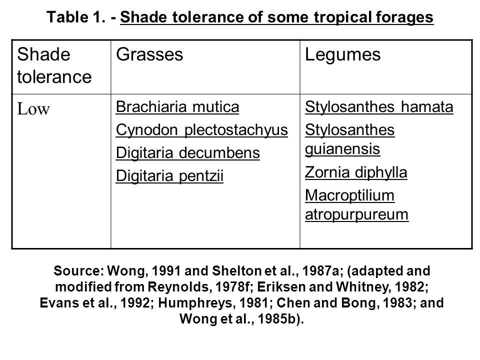 Table 1. - Shade tolerance of some tropical forages Shade tolerance GrassesLegumes Low Brachiaria mutica Cynodon plectostachyus Digitaria decumbens Di