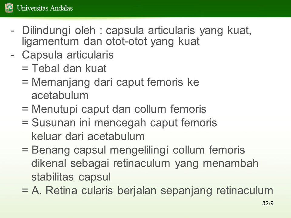 32/9 -Dilindungi oleh : capsula articularis yang kuat, ligamentum dan otot-otot yang kuat -Capsula articularis = Tebal dan kuat = Memanjang dari caput