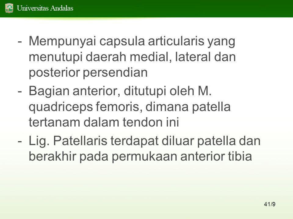 41/9 -Mempunyai capsula articularis yang menutupi daerah medial, lateral dan posterior persendian -Bagian anterior, ditutupi oleh M. quadriceps femori