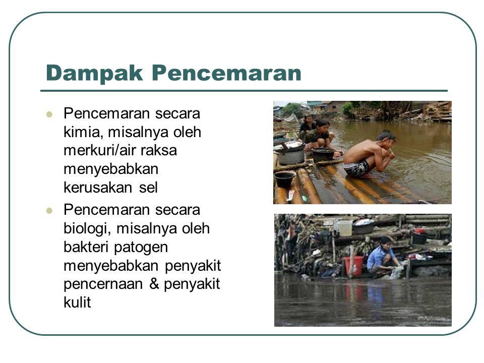 Dampak Pencemaran  Pencemaran secara kimia, misalnya oleh merkuri/air raksa menyebabkan kerusakan sel  Pencemaran secara biologi, misalnya oleh bakt