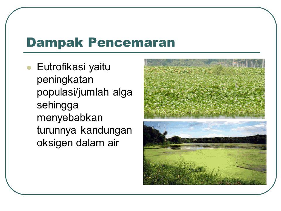 Dampak Pencemaran  Eutrofikasi yaitu peningkatan populasi/jumlah alga sehingga menyebabkan turunnya kandungan oksigen dalam air