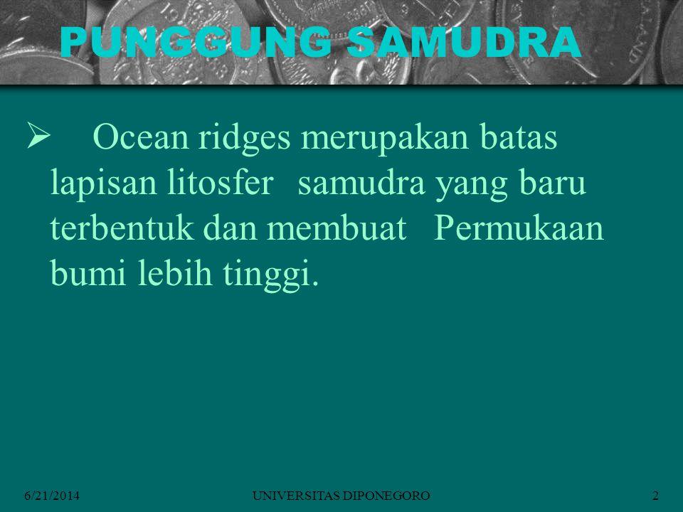 6/21/2014UNIVERSITAS DIPONEGORO2 PUNGGUNG SAMUDRA  Ocean ridges merupakan batas lapisan litosfer samudra yang baru terbentuk dan membuat Permukaan bumi lebih tinggi.