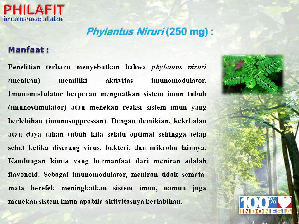 11b Phylantus Niruri (250 mg) : Manfaat : Penelitian terbaru menyebutkan bahwa phylantus niruri (meniran) memiliki aktivitas imunomodulator.