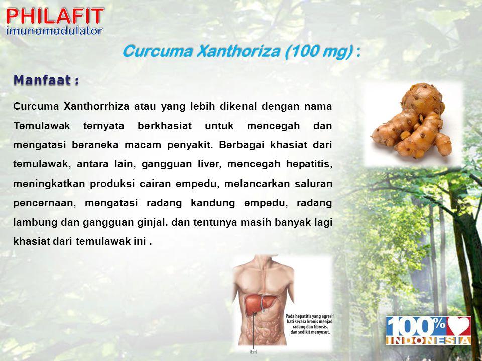 Curcuma Xanthoriza (100 mg) : Manfaat : Curcuma Xanthorrhiza atau yang lebih dikenal dengan nama Temulawak ternyata berkhasiat untuk mencegah dan mengatasi beraneka macam penyakit.