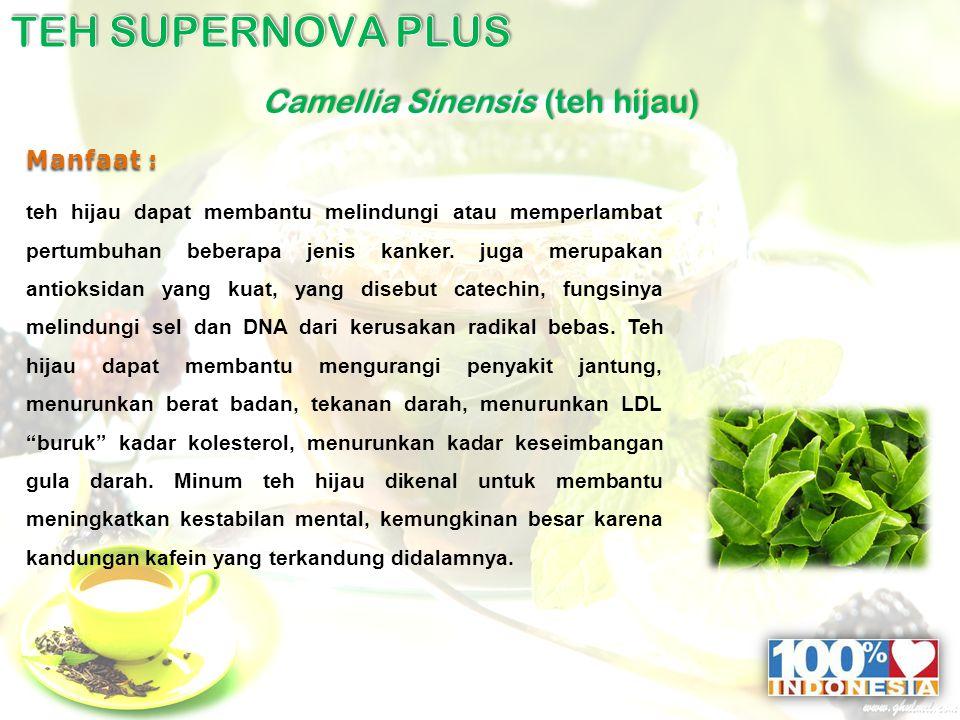 Camellia Sinensis (teh hijau) Manfaat : teh hijau dapat membantu melindungi atau memperlambat pertumbuhan beberapa jenis kanker.