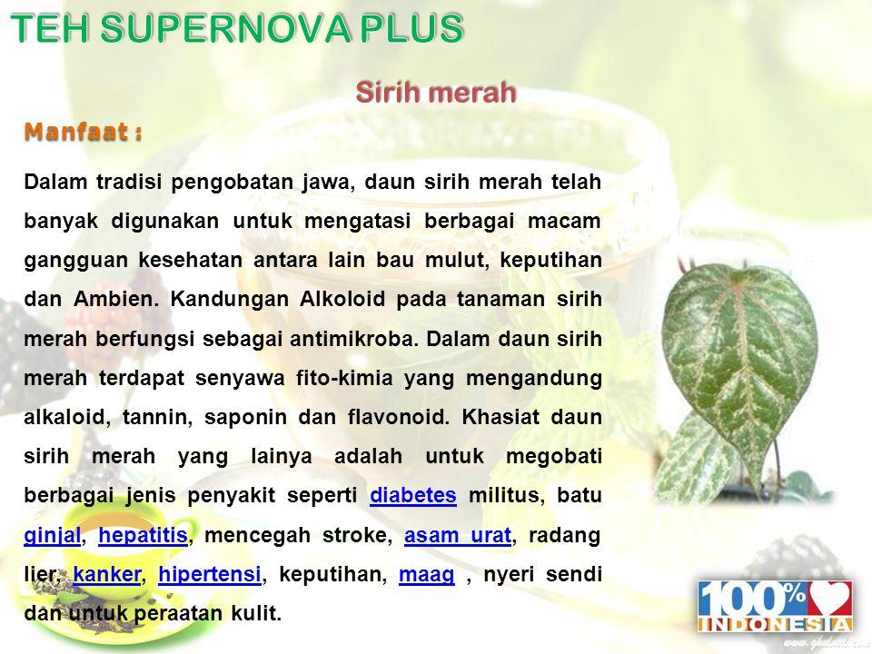 Sirih merah Manfaat : Dalam tradisi pengobatan jawa, daun sirih merah telah banyak digunakan untuk mengatasi berbagai macam gangguan kesehatan antara lain bau mulut, keputihan dan Ambien.