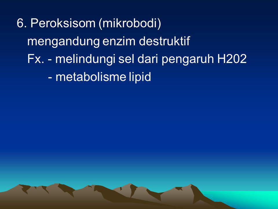 6. Peroksisom (mikrobodi) mengandung enzim destruktif Fx. - melindungi sel dari pengaruh H202 - metabolisme lipid