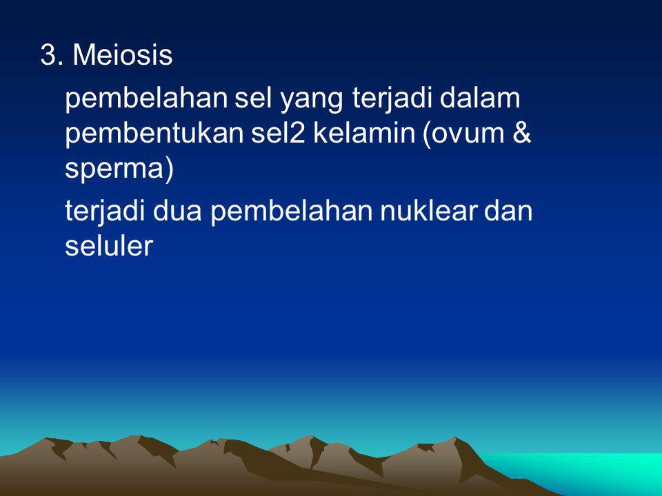 3. Meiosis pembelahan sel yang terjadi dalam pembentukan sel2 kelamin (ovum & sperma) terjadi dua pembelahan nuklear dan seluler