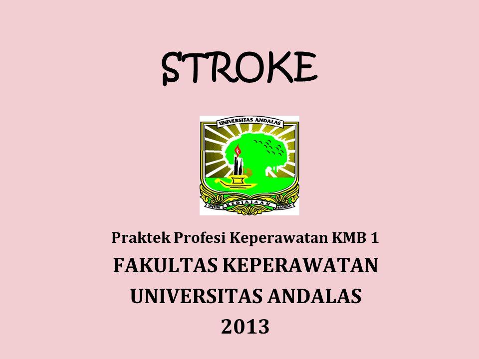 STROKE Praktek Profesi Keperawatan KMB 1 FAKULTAS KEPERAWATAN UNIVERSITAS ANDALAS 2013