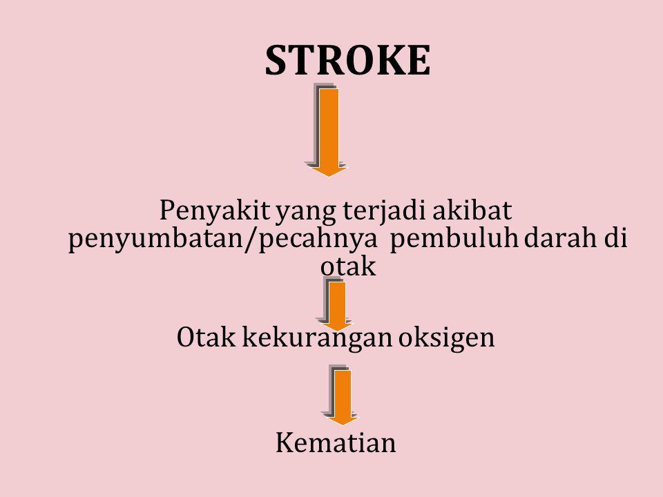STROKE Penyakit yang terjadi akibat penyumbatan/pecahnya pembuluh darah di otak Otak kekurangan oksigen Kematian