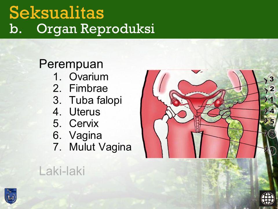 Seksualitas b. Organ Reproduksi Perempuan 1.Ovarium 2.Fimbrae 3.Tuba falopi 4.Uterus 5.Cervix 6.Vagina 7.Mulut Vagina Laki-laki