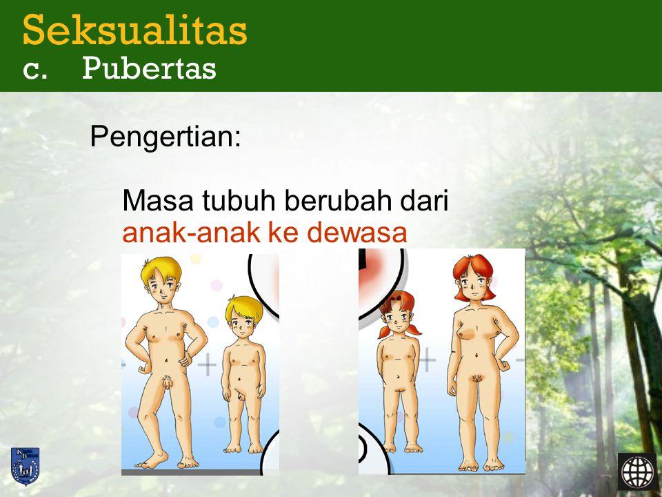Seksualitas c. Pubertas Kapan pubertas?  Awal  Akhir 13/14 th 11/12 th 17/18 th