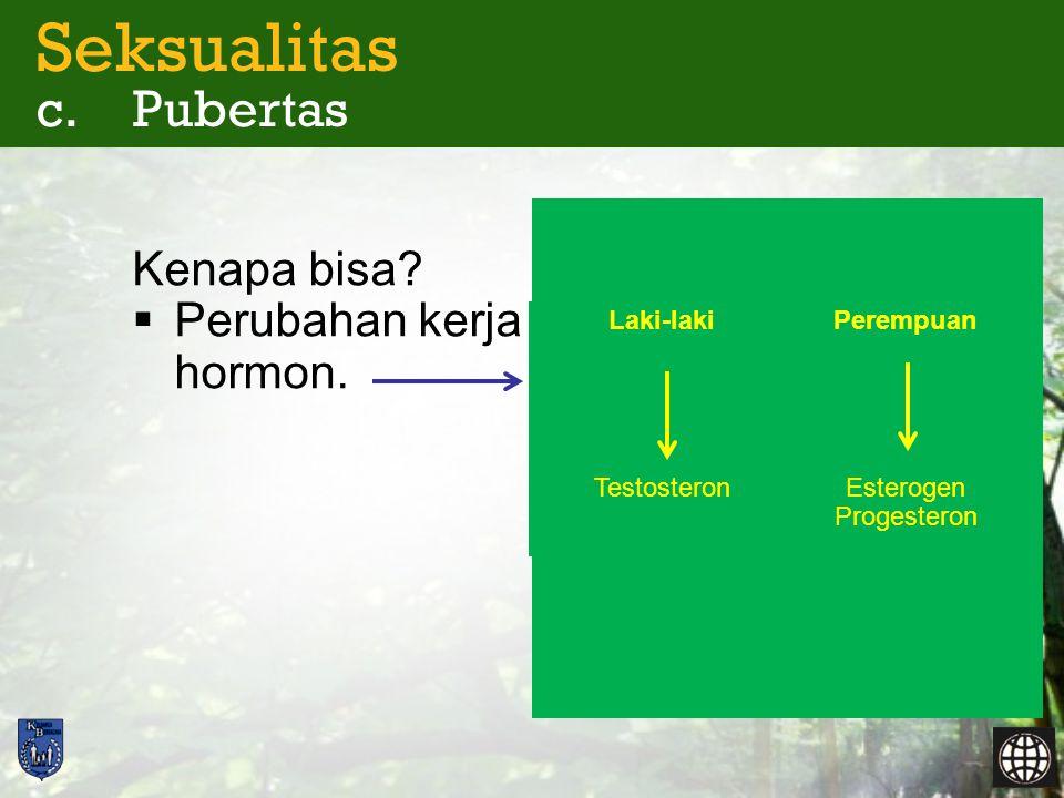 Seksualitas c. Pubertas Kenapa bisa?  Perubahan kerja hormon. Esterogen Progesteron Testosteron PerempuanLaki-laki