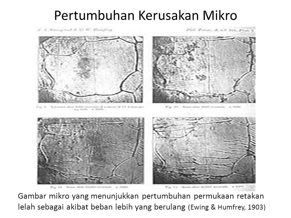 Pertumbuhan Kerusakan Mikro Gambar mikro yang menunjukkan pertumbuhan permukaan retakan lelah sebagai akibat beban lebih yang berulang (Ewing & Humfrey, 1903)