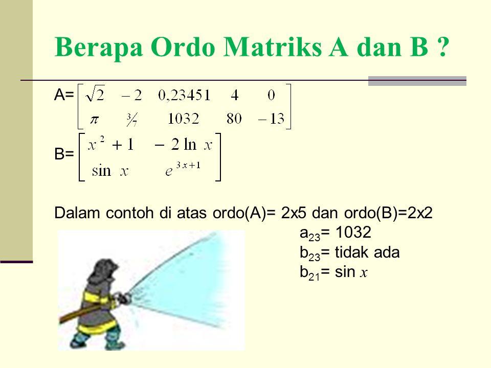 Berapa Ordo Matriks A dan B ? A= B= Dalam contoh di atas ordo(A)= 2x5 dan ordo(B)=2x2 a 23 = 1032 b 23 = tidak ada b 21 = sin x