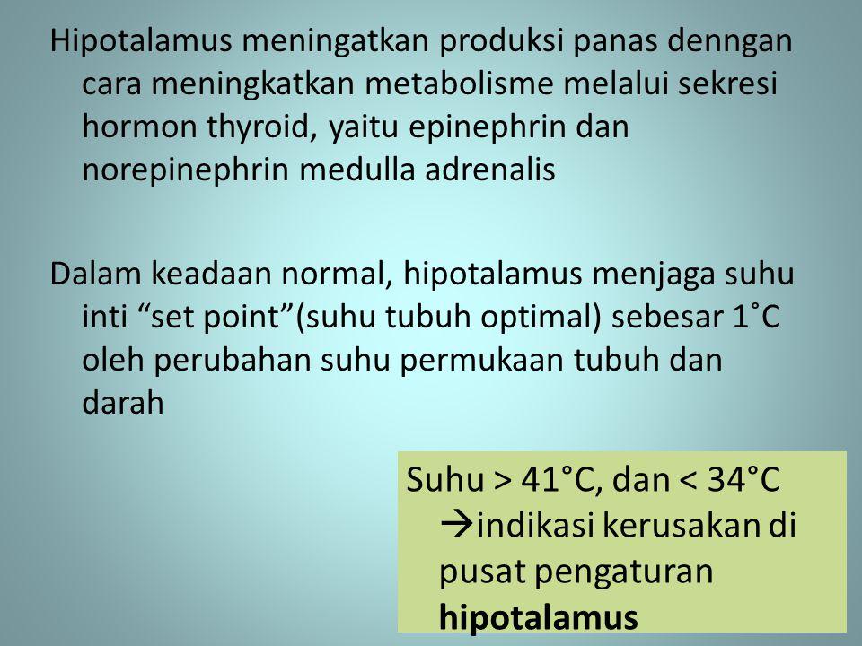 Hipotalamus meningatkan produksi panas denngan cara meningkatkan metabolisme melalui sekresi hormon thyroid, yaitu epinephrin dan norepinephrin medull