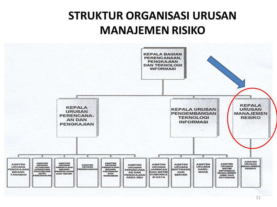 STRUKTUR ORGANISASI URUSAN MANAJEMEN RISIKO 11