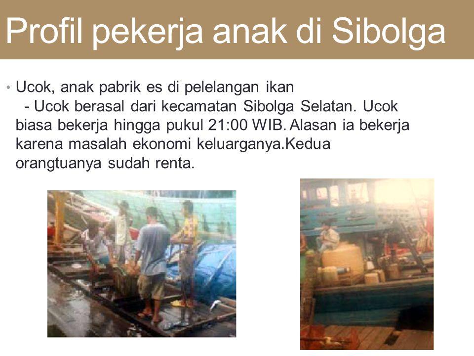 Profil pekerja anak di Sibolga • Ucok, anak pabrik es di pelelangan ikan - Ucok berasal dari kecamatan Sibolga Selatan. Ucok biasa bekerja hingga puku