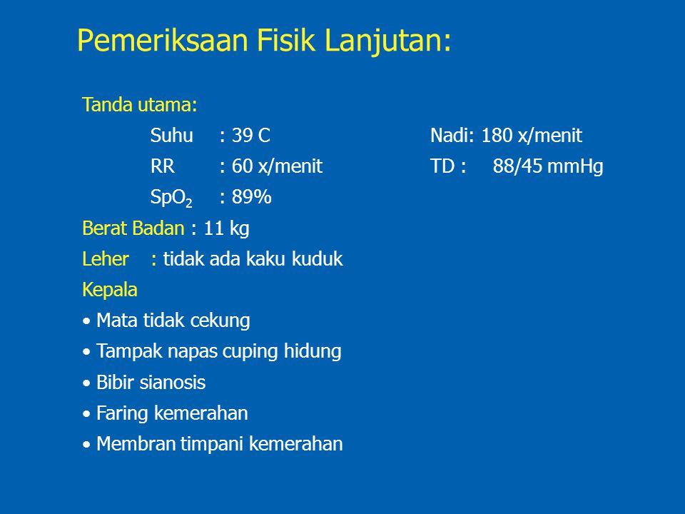 Pemeriksaan Fisik Lanjutan: Tanda utama: Suhu: 39 C Nadi: 180 x/menit RR: 60 x/menit TD :88/45 mmHg SpO 2 : 89% Berat Badan : 11 kg Leher: tidak ada k