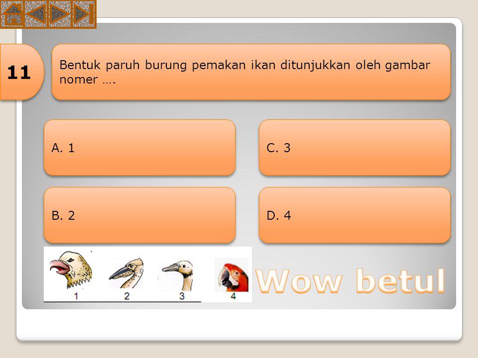 Dalam rantai makanan terdapat hewan sebagai berikut: 1)Padi 3) Ular 5) Burung pipit 2)Belalang 4) Katak 6) burung elang Hewan yang berkedudukan sebaga
