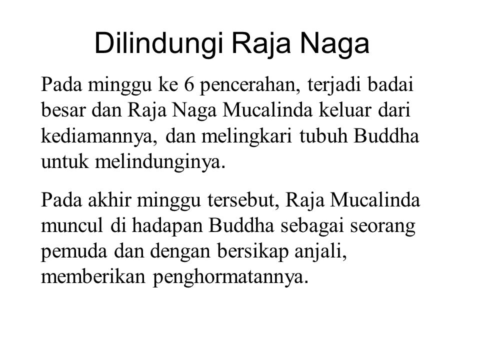 Dilindungi Raja Naga Pada minggu ke 6 pencerahan, terjadi badai besar dan Raja Naga Mucalinda keluar dari kediamannya, dan melingkari tubuh Buddha untuk melindunginya.