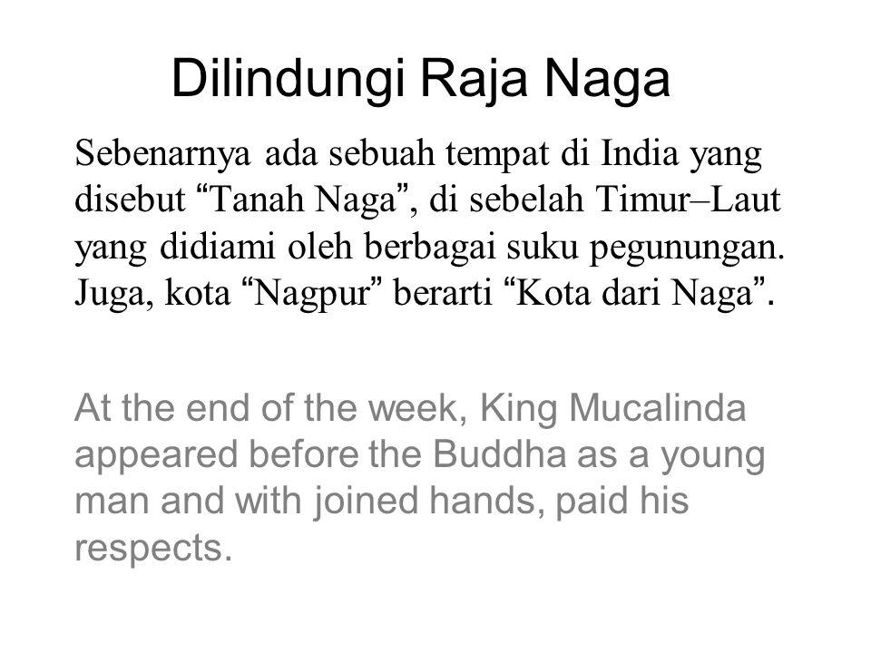 Dilindungi Raja Naga Sebenarnya ada sebuah tempat di India yang disebut Tanah Naga , di sebelah Timur–Laut yang didiami oleh berbagai suku pegunungan.