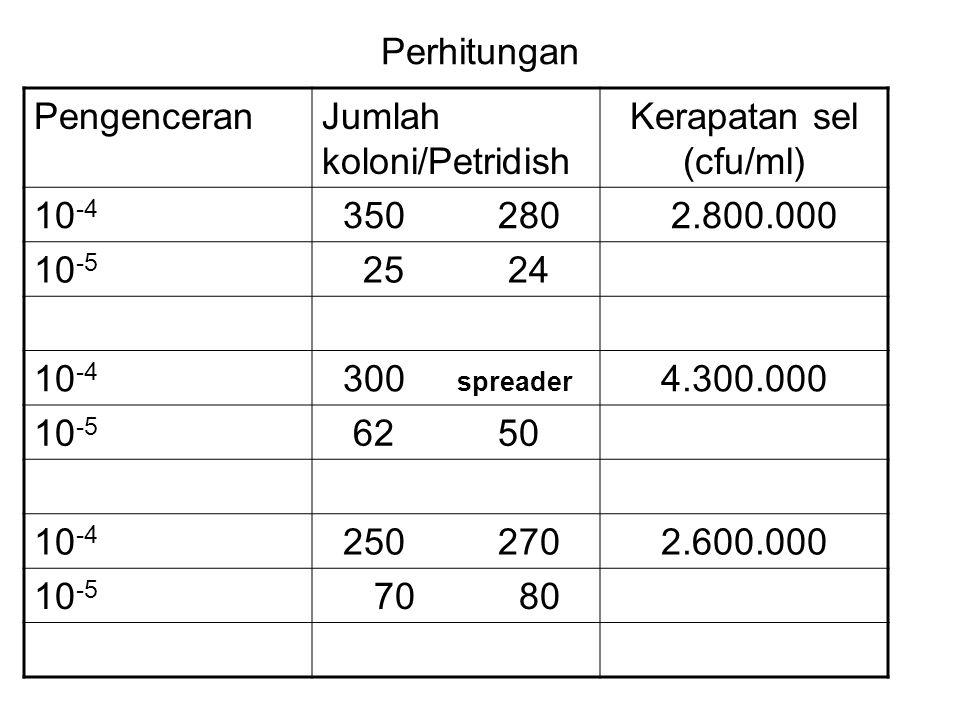 Perhitungan PengenceranJumlah koloni/Petridish Kerapatan sel (cfu/ml) 10 -4 350 280 2.800.000 10 -5 25 24 10 -4 300 spreader 4.300.000 10 -5 62 50 10