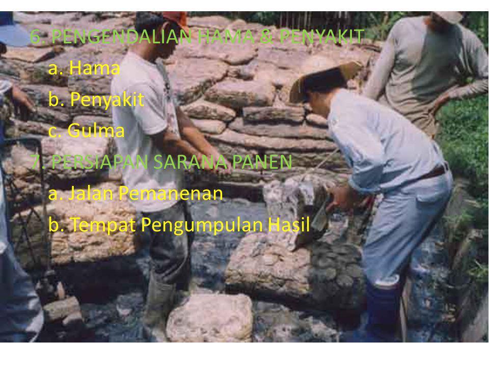 6.PENGENDALIAN HAMA & PENYAKIT a. Hama b. Penyakit c.