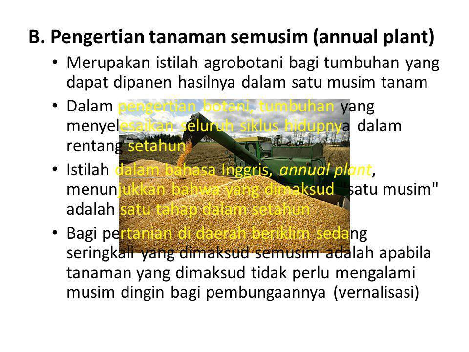 B. Pengertian tanaman semusim (annual plant) • Merupakan istilah agrobotani bagi tumbuhan yang dapat dipanen hasilnya dalam satu musim tanam • Dalam p