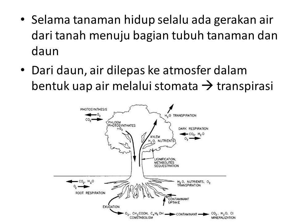 • Selama tanaman hidup selalu ada gerakan air dari tanah menuju bagian tubuh tanaman dan daun • Dari daun, air dilepas ke atmosfer dalam bentuk uap air melalui stomata  transpirasi